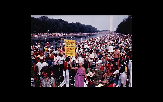 People with signs crowd the National Mall in Washington DC.